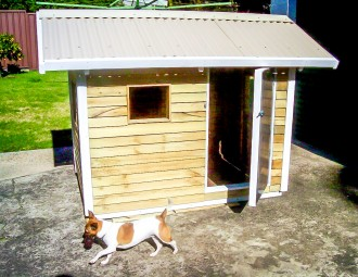 dog kennel sydney