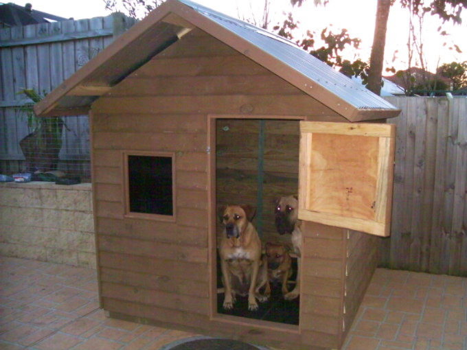 dog kennel 1.8m x 1.8m, gable roof, perspex window, barn door $1110