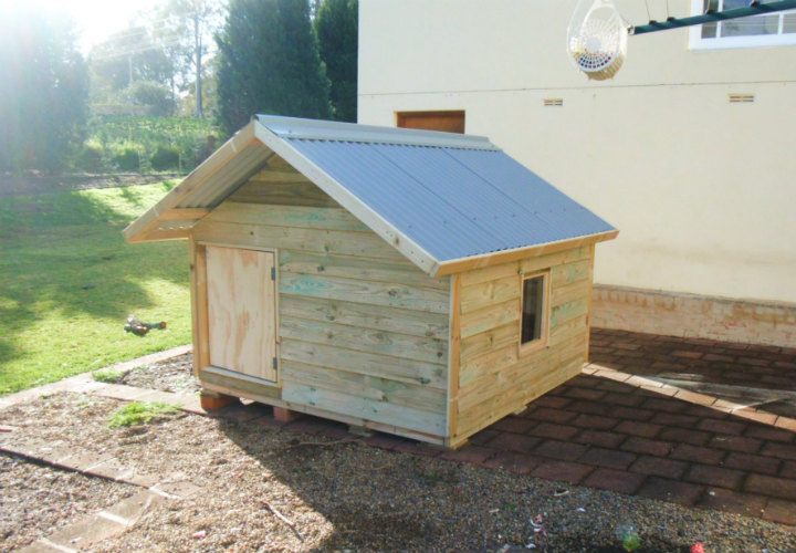 dog kennel 1.8m x 1.8m, gable roof perspex window, ply door $840
