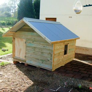 extra large kennel, gable roof, ply door $1215 with accessories